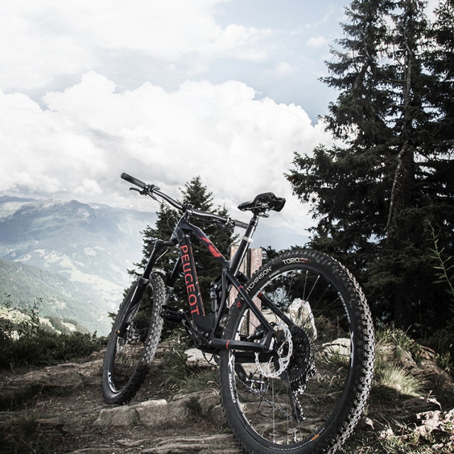 Mountain bike Peugeot